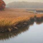 Web_Herring River in Fog-jdimattia_jpg