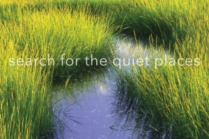 search-for-the-quiet-places