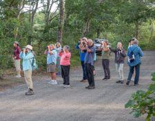 web-Bells-Neck-birding-by-Gerry-Beetham-28Sept2021-06