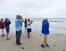 web-Trull-RR-bird-walk-by-Gerry-Beetham-10Aug2021-05
