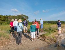 web-Trull-RR-bird-walk-by-Gerry-Beetham-17Aug2021-03