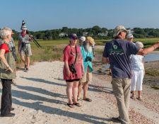 web-Trull-RR-bird-walk-by-Gerry-Beetham-26Aug2021-10