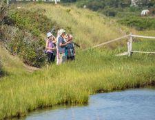 web-Trull-RR-bird-walk-by-Gerry-Beetham-26Aug2021-25