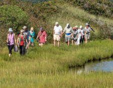 web-Trull-RR-bird-walk-by-Gerry-Beetham-26Aug2021-30