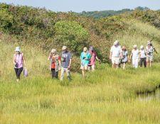 web-Trull-RR-bird-walk-by-Gerry-Beetham-26Aug2021-31