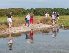 web-Trull-RR-bird-walk-by-Gerry-Beetham-31Aug2021-14