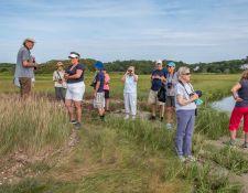 web-Trull-RR-bird-walk-by-Gerry-Beetham-31Aug2021-16