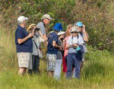 web-Trull-RR-bird-walk-by-Gerry-Beetham-31Aug2021-35