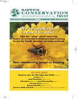 Newsletter - Summer 2009