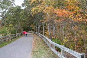 People walking along Cape Cod Rail Trail