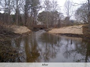 after-dam-removal_2-web