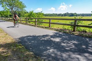 Bike on Cape Cod Trail